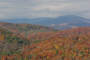 Fall Colors Images