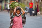 Mawsynram, India Images
