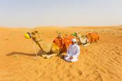 Desert Conservation Reserve