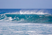 North Shore / Surfers Images