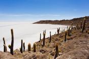 Inkawasi (Cactus Island)