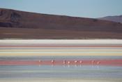 Colored Laguna Images