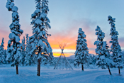 Canada Yukon Territory